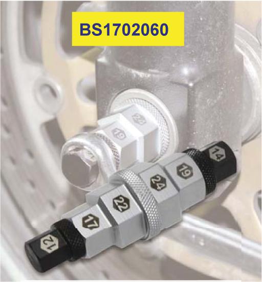 BS1702060
